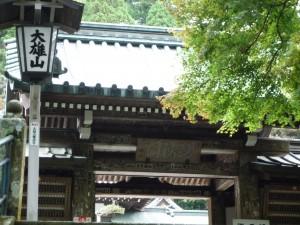 最乗寺 瑠璃門