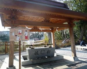 師岡熊野神社 手水舎