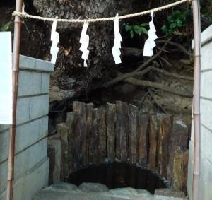 師岡熊野神社 のの池