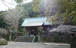 安房神社 社殿 遠景