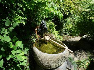 東叶神社 銭洗い