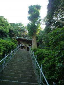 走水神社 石段