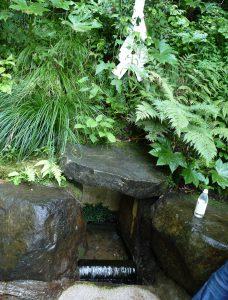 鹿島神宮 ご神水