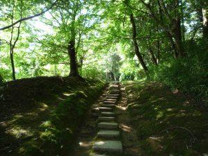 香取神宮 要石への道