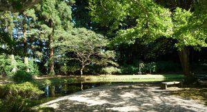 香取神宮 池